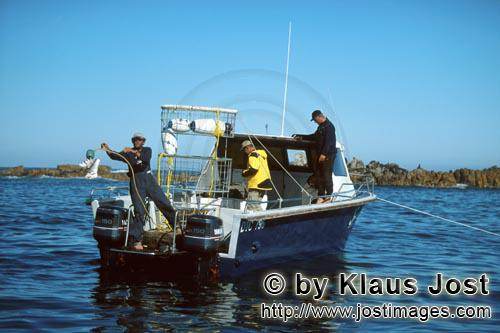 Dyer Island/Western Cape/South Africa        Andre Hartman throws a fishing bait