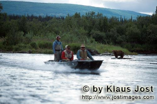 Specialboat and the brown bear