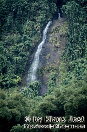 Rainforest/Viti Levu/Fiji        Waterfall in the green of the rainforest