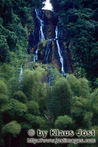 Wasserfall im Fiji Regenwald/Waterfall in the Fiji rainforest        Waterfall in the Fiji rainfores
