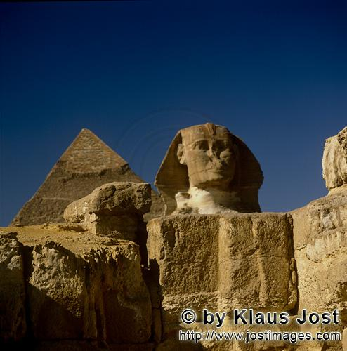 Great Sphinx of Giza /Sphinx von Gizeh            Sphinx of Giza front view