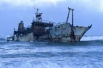 Meisho Maru 38 ran aground on 16 November 1982