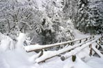 Snow-covered brook bridge