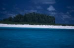 Island in the Midway Atoll