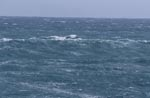 Sea surface agitated by the storm
