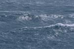 Strongly Sea surface motion