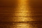 Golden the sun goes down over the ocean