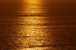 Golden sunset over the sea