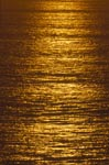Golden shines the sea at sunset
