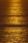 Golden sea surface at sunset