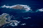 Aerial Photograph of Geyser Rock , Shark Alley and Dyer Island