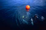 Diver controls border buoy at the protected area