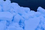 Pack ice consists of densely arranged ice floes