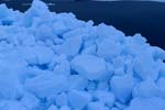 Pack Ice is the most common type of sea ice