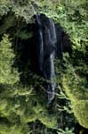 Picturesque waterfall in the jungle