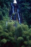 Waterfall in the Fiji rainforest