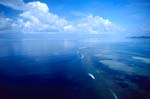 Aerial view Shark Reef with clouds background
